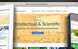 WSU RIA website announcement